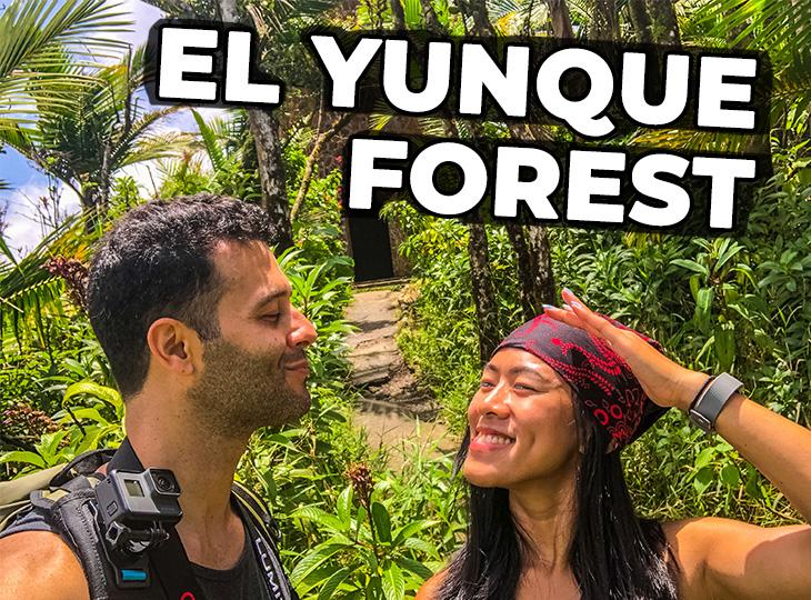 Hiking El Yunque National Forest - Mt Britton Trail